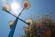Camara NIKON D40 Iluminación Natural Cristian Revelo IBARRA Foto: 18389