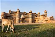Palacio Manmandir, Gwalior, India