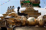 Camara Canon EOS 5D Mark III Viaje a Nepal KATMANDU Foto: 30127