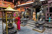 Camara Canon EOS 5D Mark III Viaje a Nepal PATAN Foto: 30109