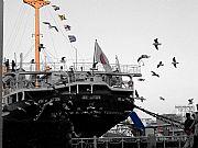 Foto de Tokyo, Puerto de Tokyo, Japon - Barco japones