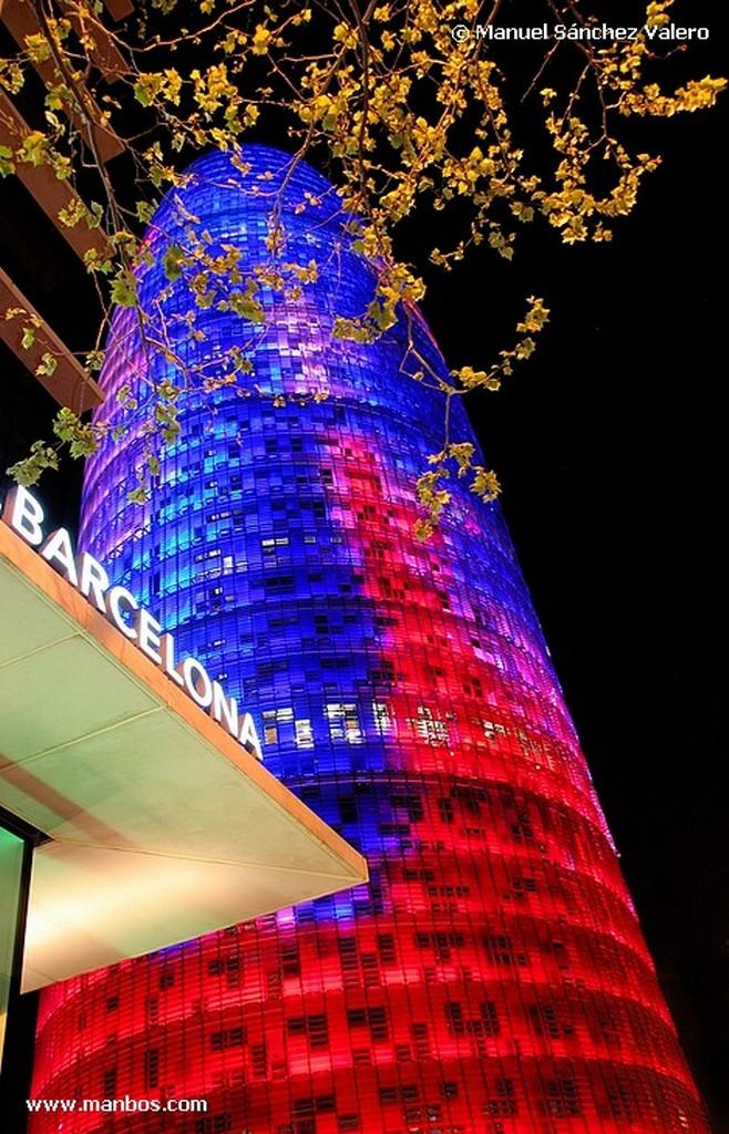Barcelona Arbol con Torre Barcelona