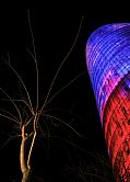Photo of Barcelona, Spain - Arbol con Torre