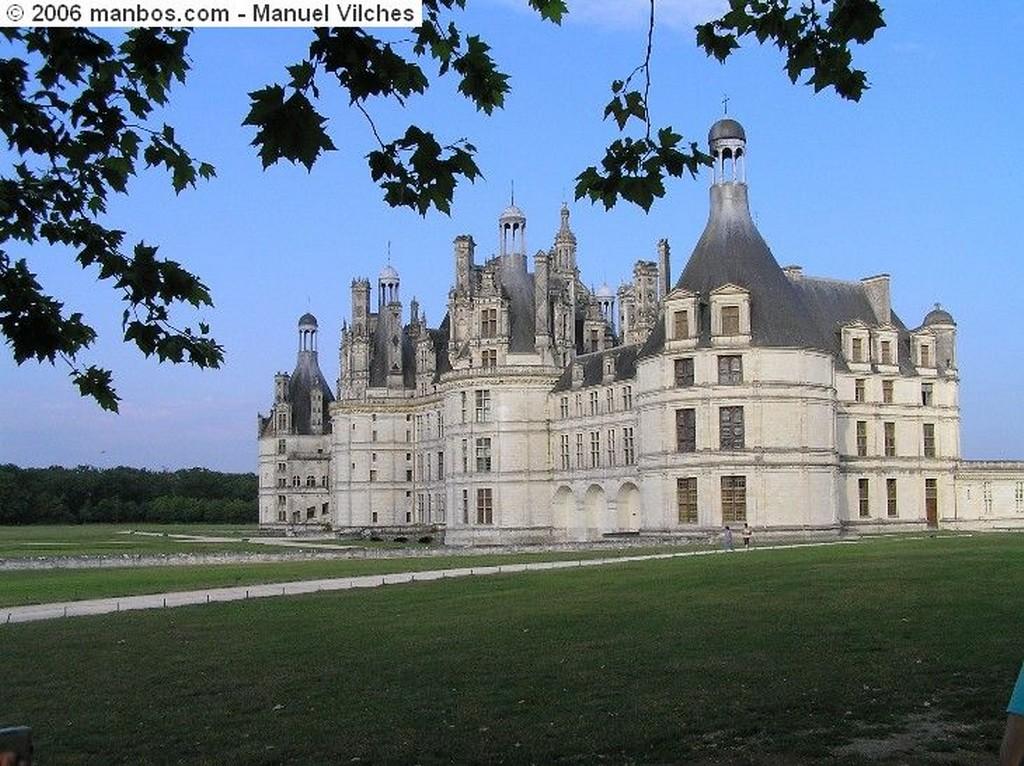 Carcassonne Caballos de la cité Carcassonne