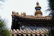 Camara Sony CyberShot DSC-V3 Palacio Yong He Gong Carlos Clemente BEIJING Foto: 10044