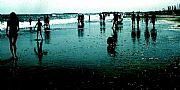 Camara NewSoft FioExif Islantilla . Contraluz en la playa Francisco José Fuente Pérez ISLANTILLA Foto: 5654