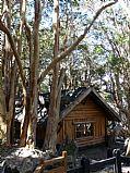 Camara Panasonic Lumix Bosque de Arrayanes y casa de Bambi Marta Reyes SAN CARLOS DE BARILOCHE Foto: 16943