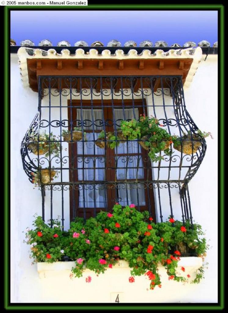 Malaga Rosa de Oro Malaga