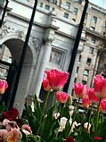 Photo of London, Marble Arch, United Kingdom - marble arch