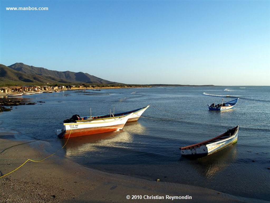 Isla Margarita  Marg el Tirano  Nueva Esparta