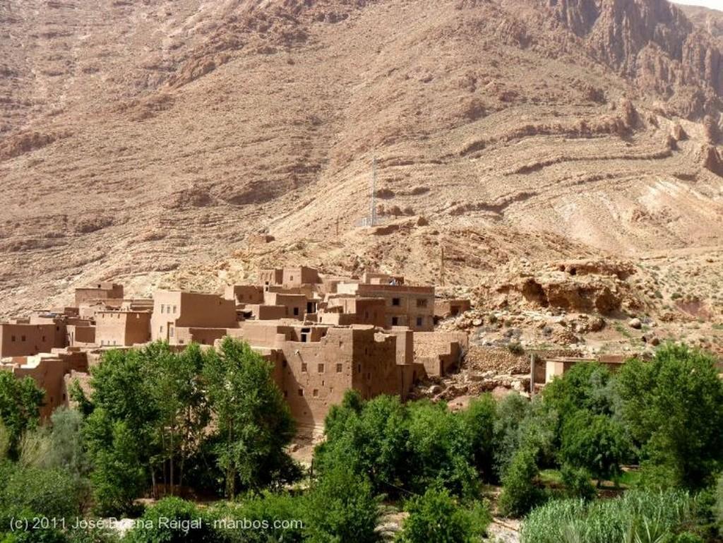 Gargantas del Todra Palmeral y huertos Ouarzazate