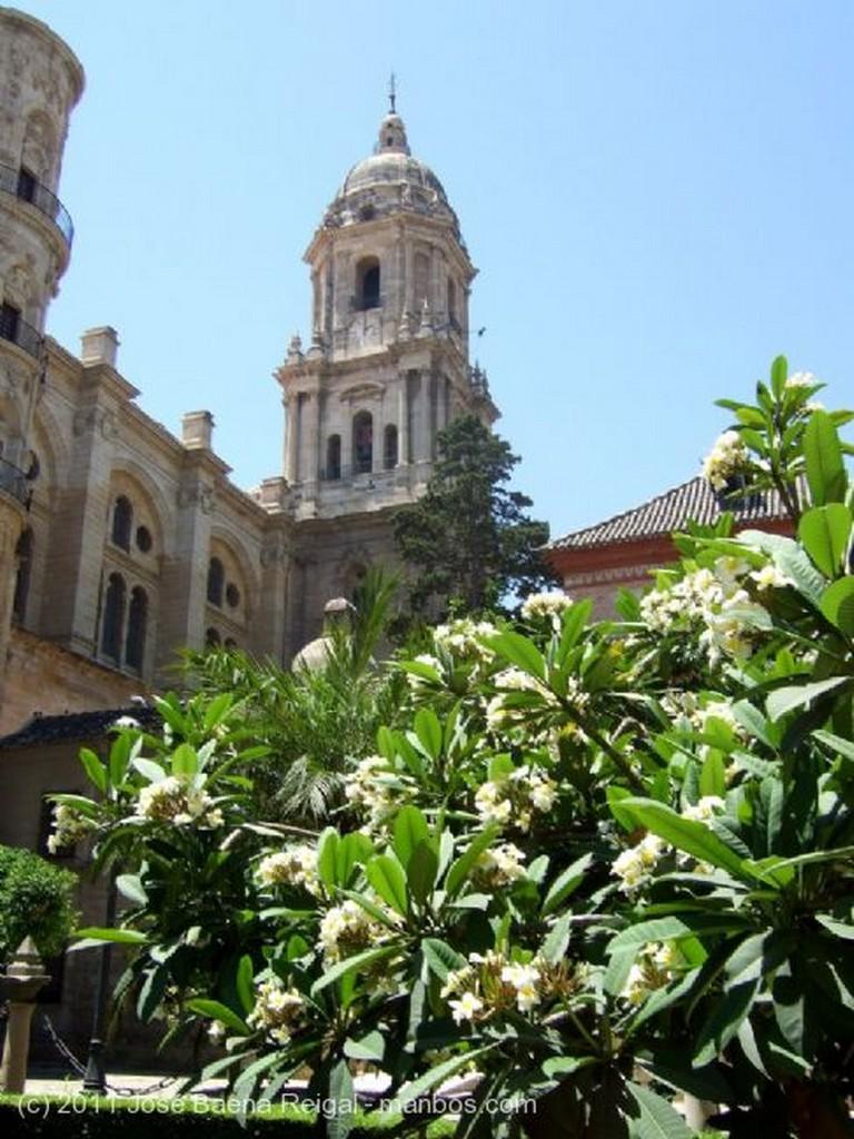 Malaga Surtidores Malaga