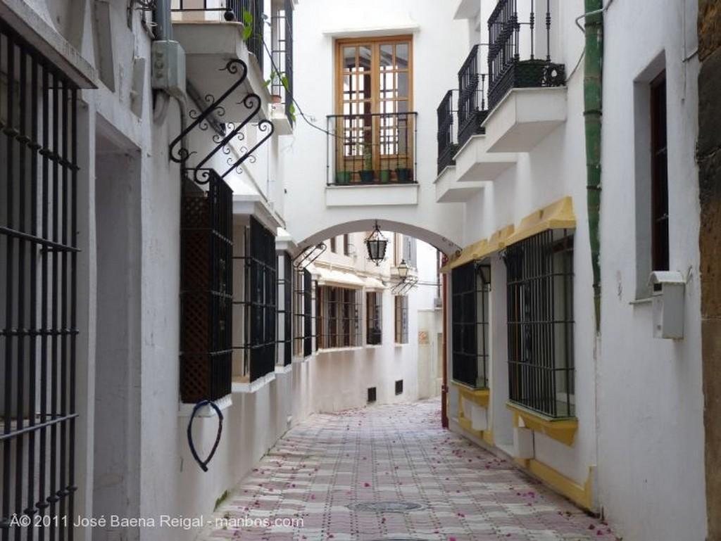 Marbella Cielo de geranios Malaga