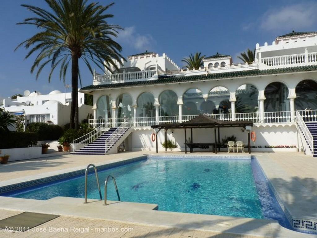 Marbella Pitas y palmeras Malaga