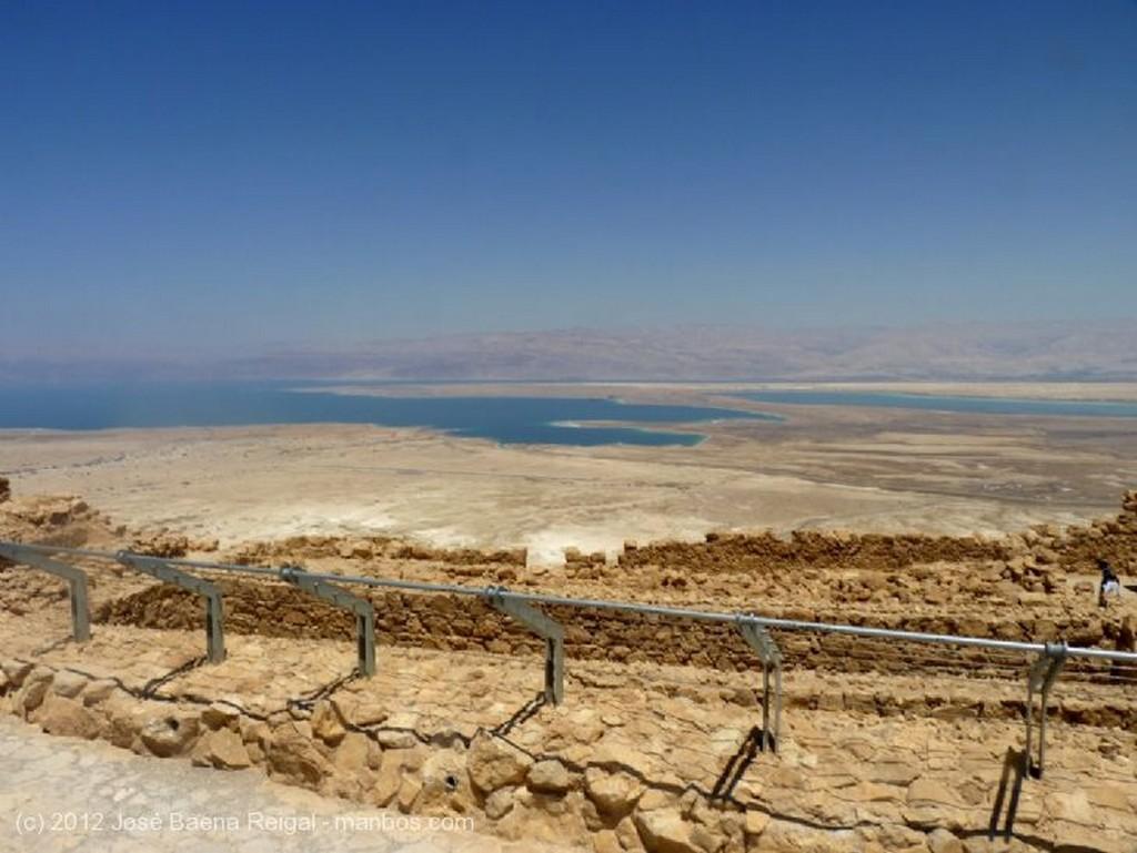 Masada Cria cuervos Distrito Meridional