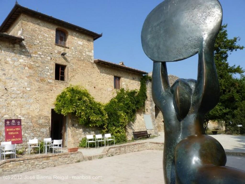 San Gimignano Pinos y olivos Siena