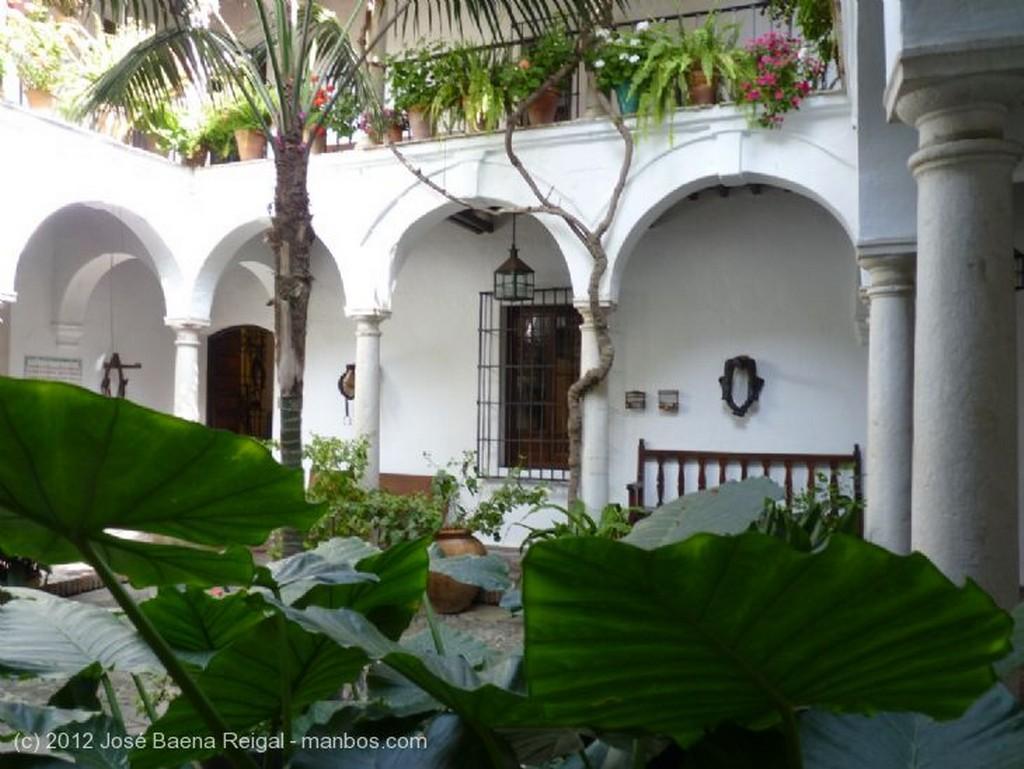 Malaga Pozo del patio Malaga