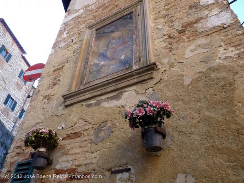 Montepulciano Cipreses y vides Siena