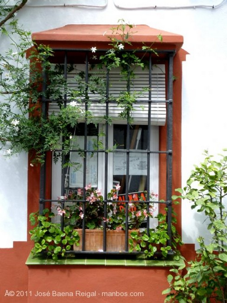 Marbella Fachada con jazmines Malaga