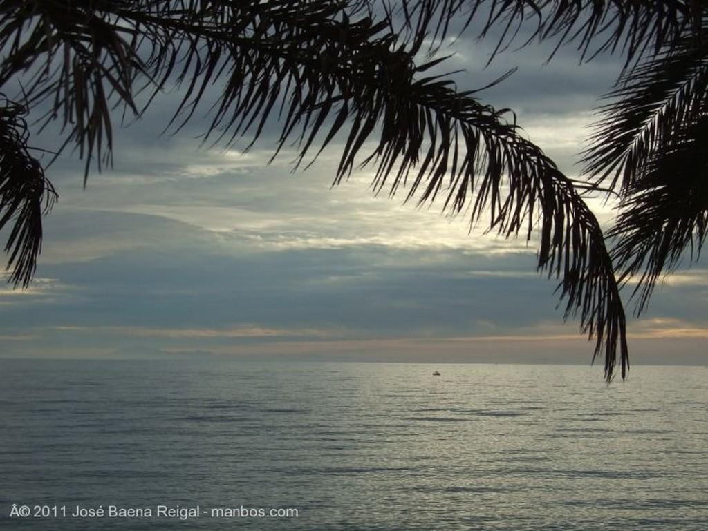 Marbella Gratis total Malaga
