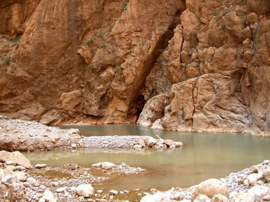Gargantas del Todra En el manantial Ouarzazate