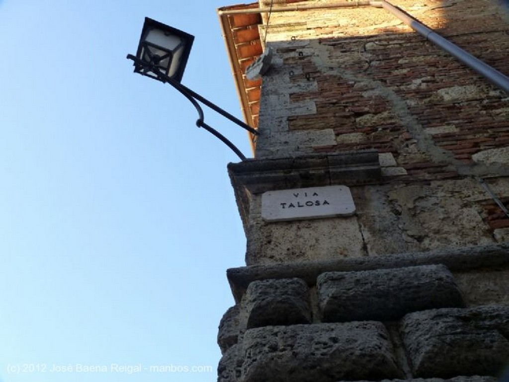 Montepulciano Muro, olivos y cipreses  Siena