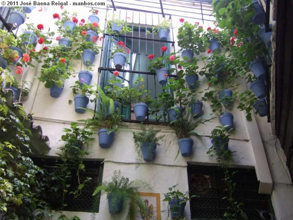 Malaga Solera tipica Malaga