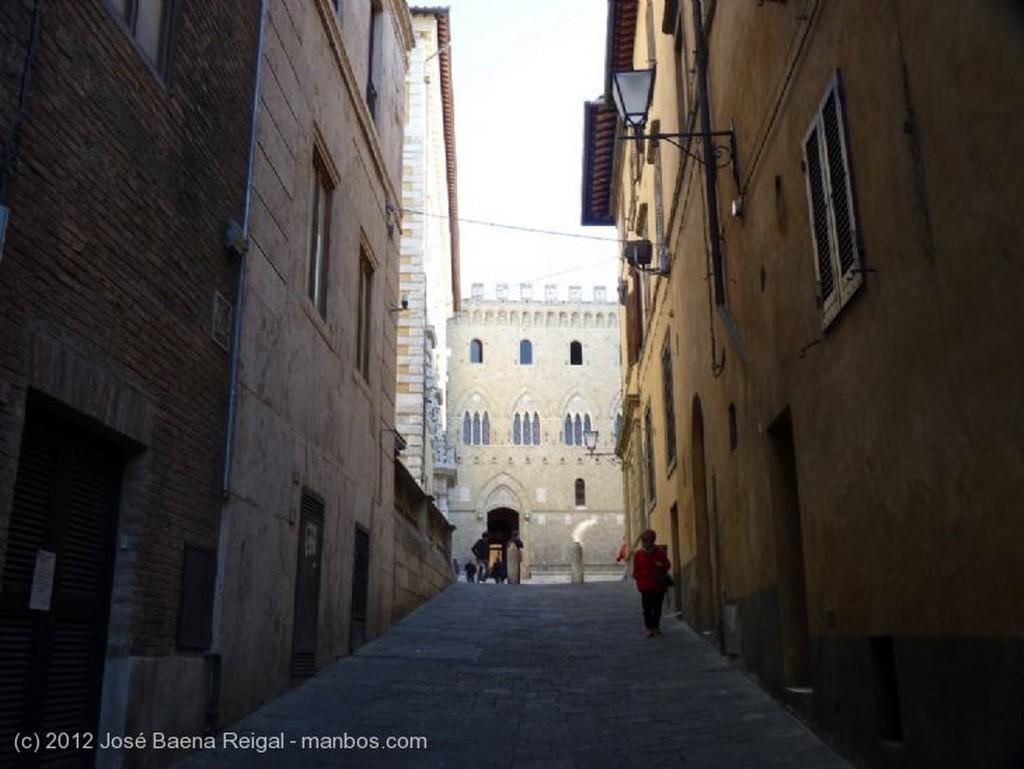 Siena Loba Capitolina Toscana