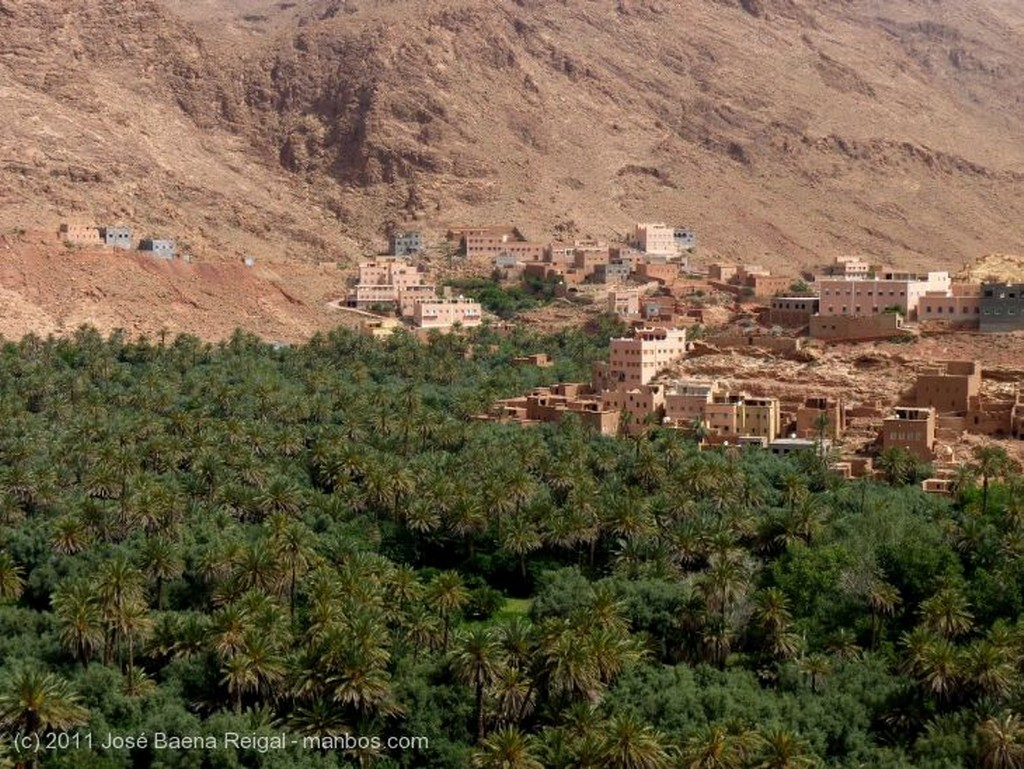 Gargantas del Todra Casas y palmeral Ouarzazate