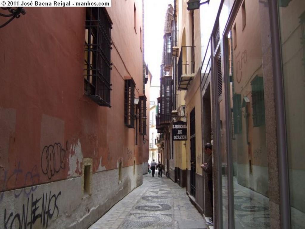 Malaga Balcones Malaga