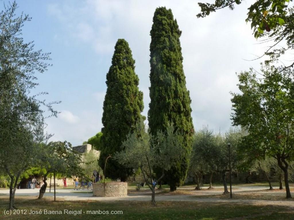 San Gimignano Perfiles inconfundibles Siena