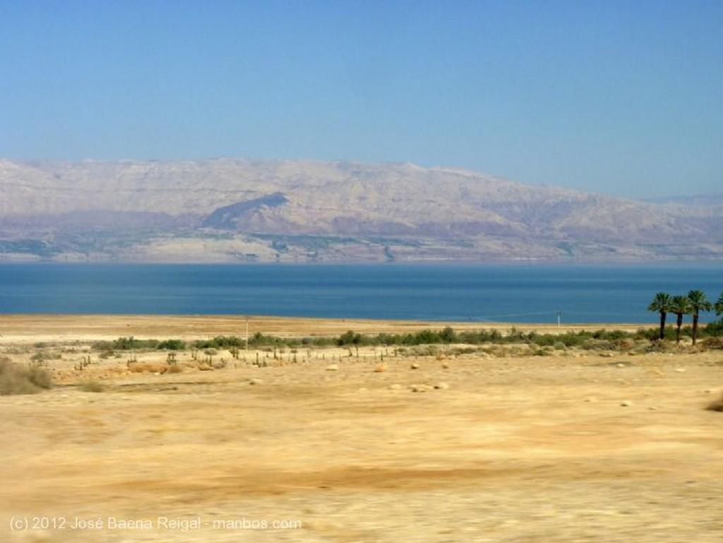 Masada Palmeral junto al Mar Muerto Distrito Meridional