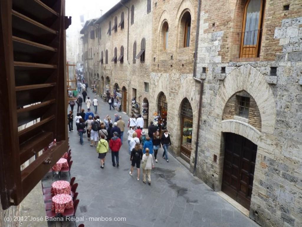 San Gimignano Arboles fantasmales Siena