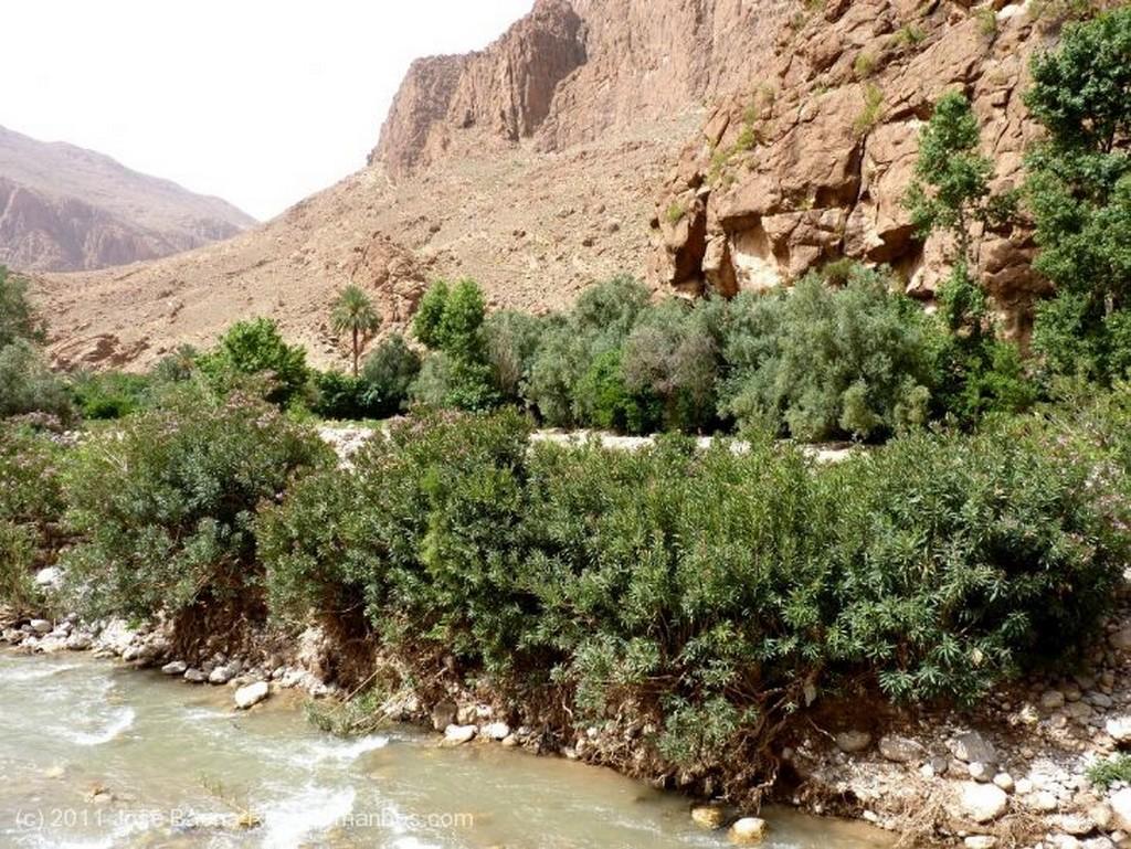 Gargantas del Todra  Chaval amazigh Ouarzazate