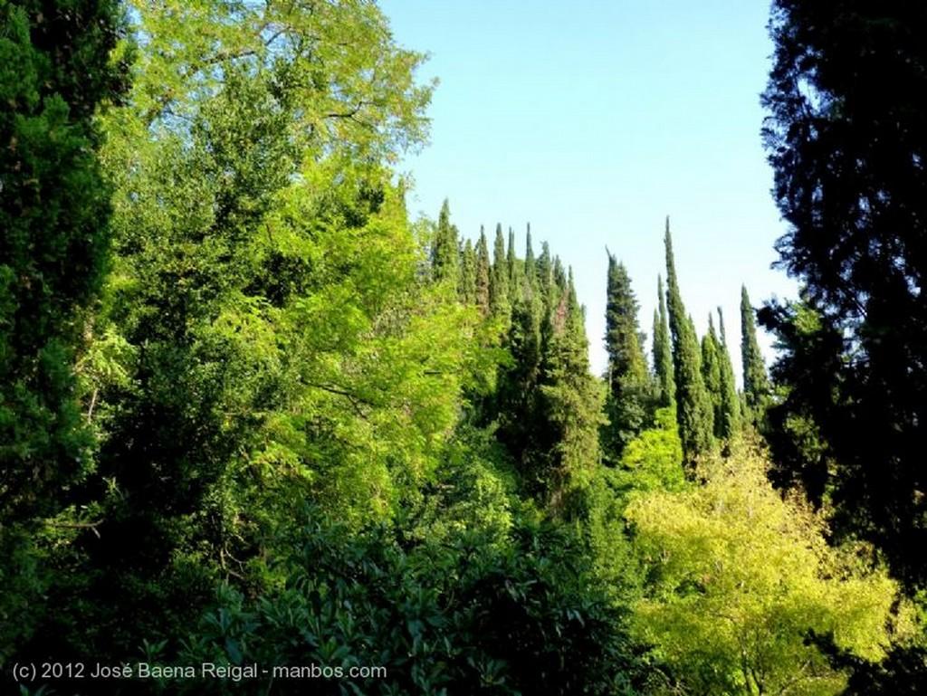 San Gimignano Bovedas y arcos medievales Siena