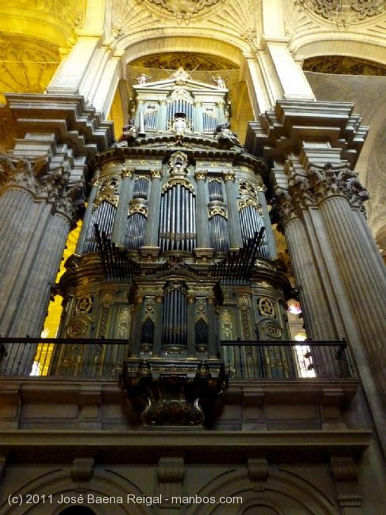 Malaga Estanque junto al abside Malaga
