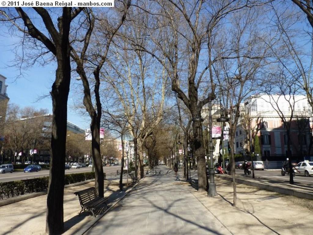 Madrid Perfiles verticales Madrid