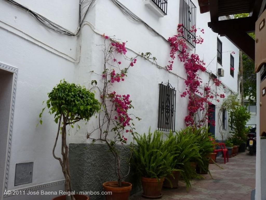 Marbella Casa Ana Malaga