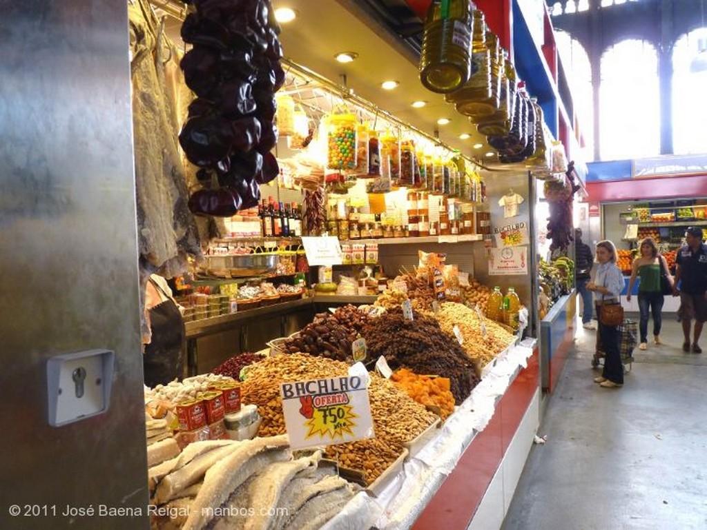 Malaga Arcos y vidriera Malaga