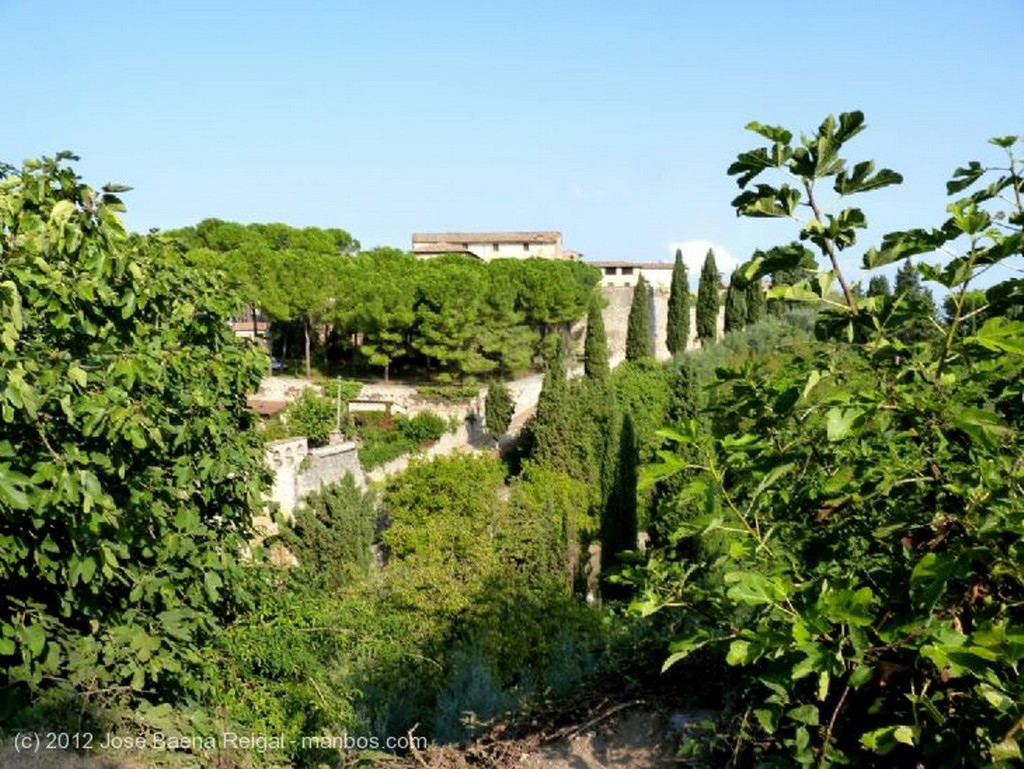 San Gimignano Muros y pinos Siena