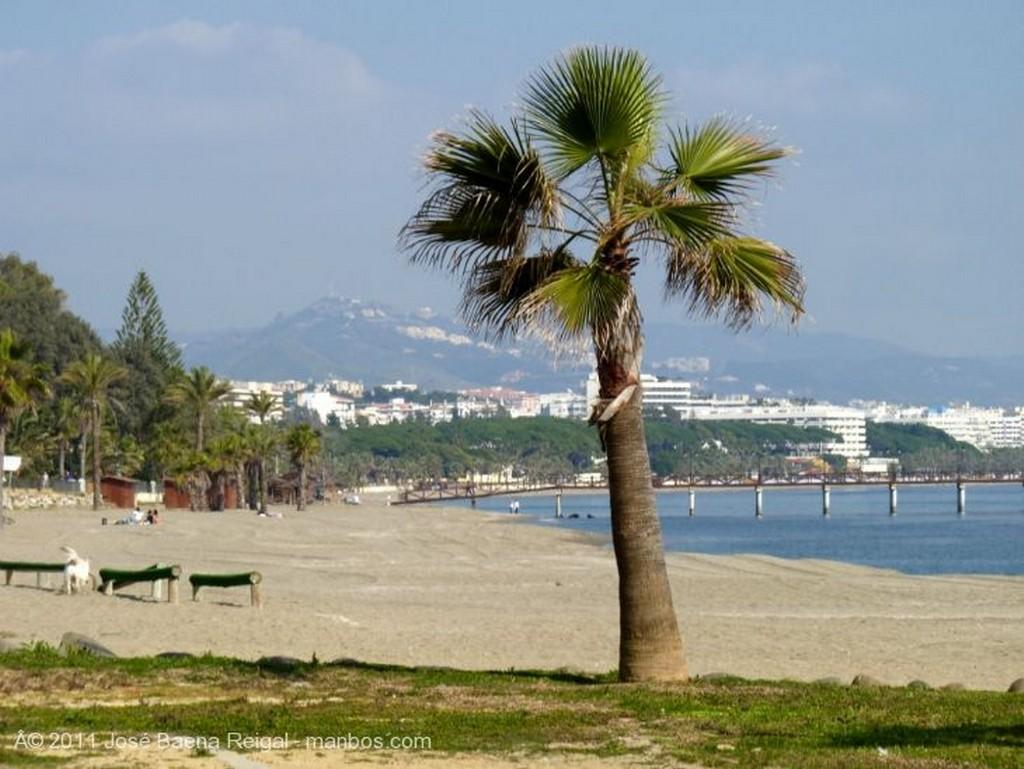 Marbella Ventana y farol Malaga