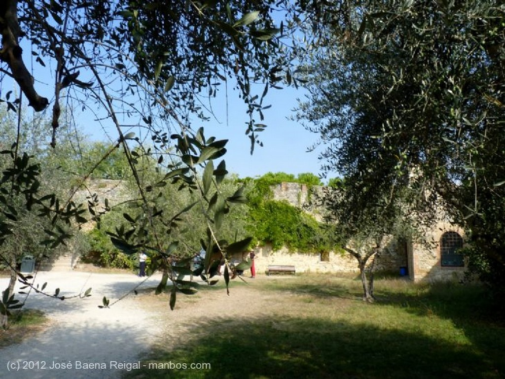 San Gimignano Museo del Vino Siena