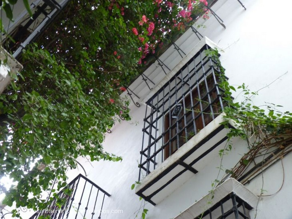 Marbella Calles silenciosas Malaga
