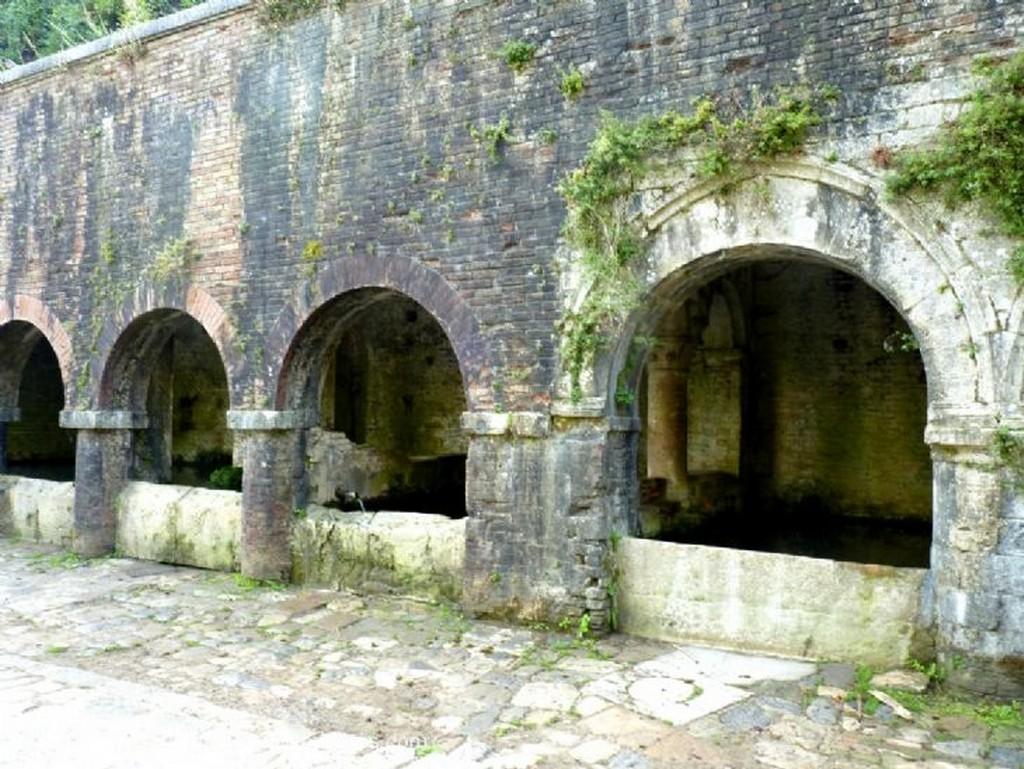 San Gimignano Muro vegetal Siena