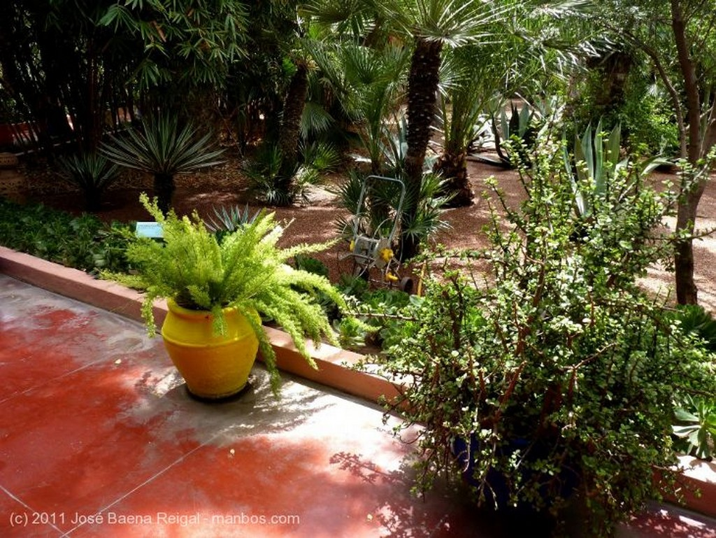 Marrakech Verde sobre ocre Marrakech