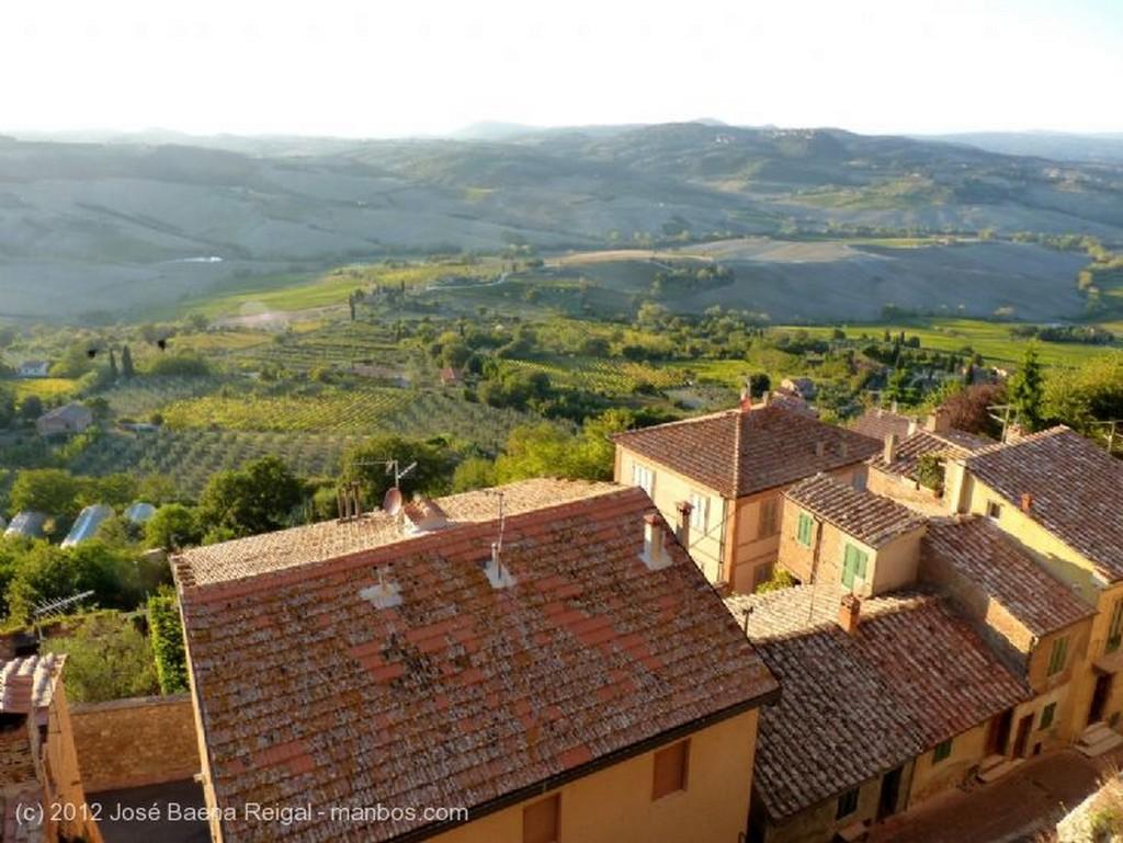 Montepulciano Vides y olivos Siena