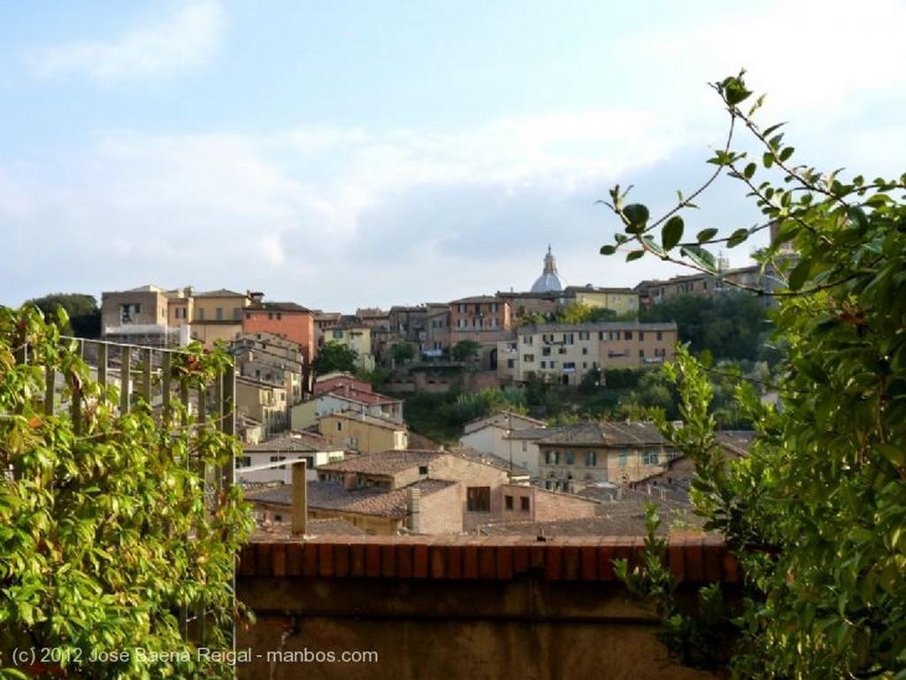 Siena Roseton central Toscana