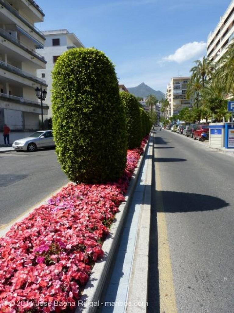 Marbella Descansando Malaga
