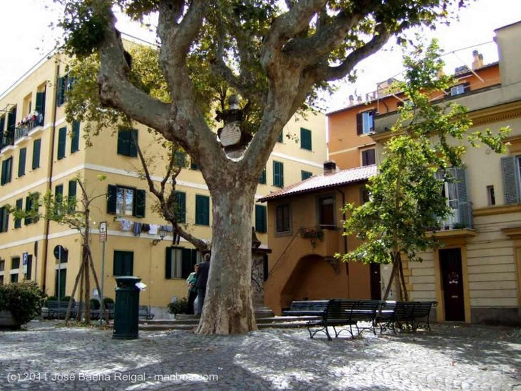 Frascati Mostrador que alimenta Lazio