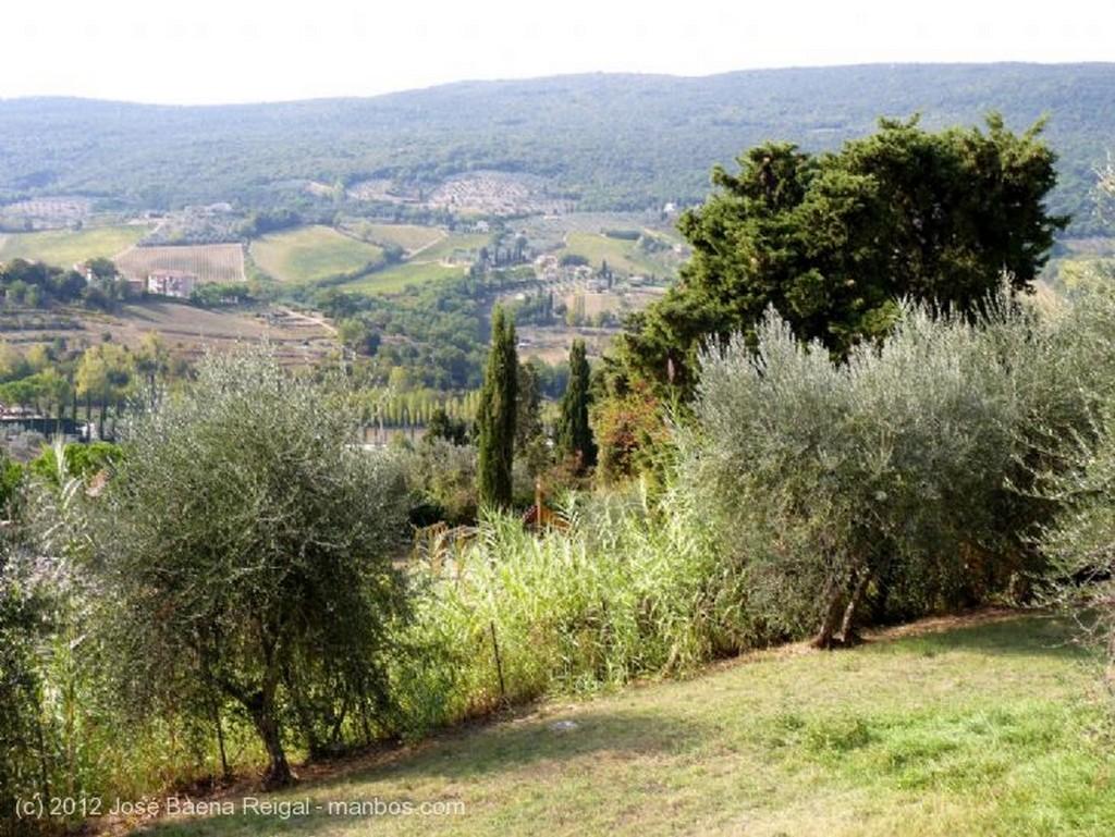San Gimignano Ensalada parmesana y blanco vernaccio Siena